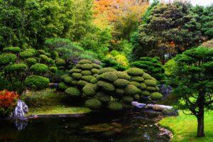 Японский сад. Обустройство
