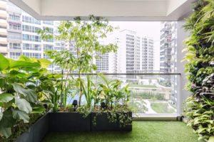 Балконный зимний сад